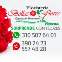 BELLAS_FLORES_LA_NOVENA.jpg