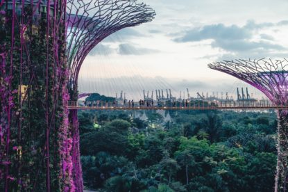 Singapore Gardens By The Bay 3