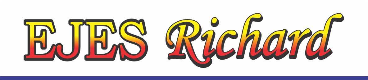 guia-emprender-ejes-richard1